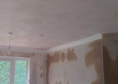 Mr Barker: New living-room plaster
